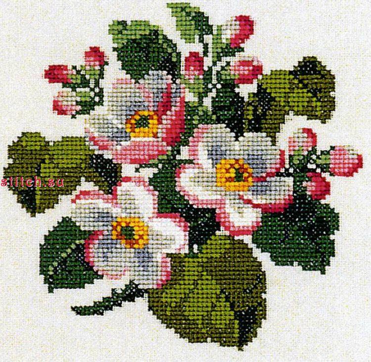 картинки для вышивания крестиком схемы фото основание этого типа