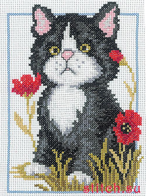 Картинки вышивки кошек