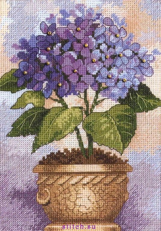 Название:Hydrangea in Bloom (Гортензия в цвету).  Техника:счетный крест.  Компания:Dimensions.
