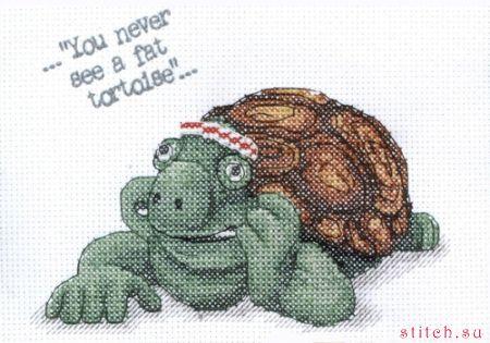 Черепаха Черепаха набор для