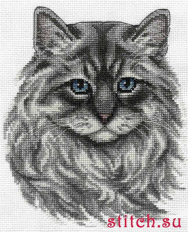 Схема вышивки сибирский кот 59