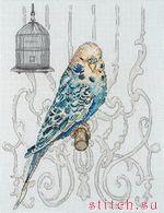 Вышивка крестом.Техника: счетный крест.Размер:10x8 (25x20cm).Канва 16 AidaНазвание: Bird In CageПроизводитель: Maia...