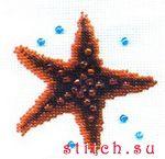 Морская звезда, 11х11, вышивка бисером.