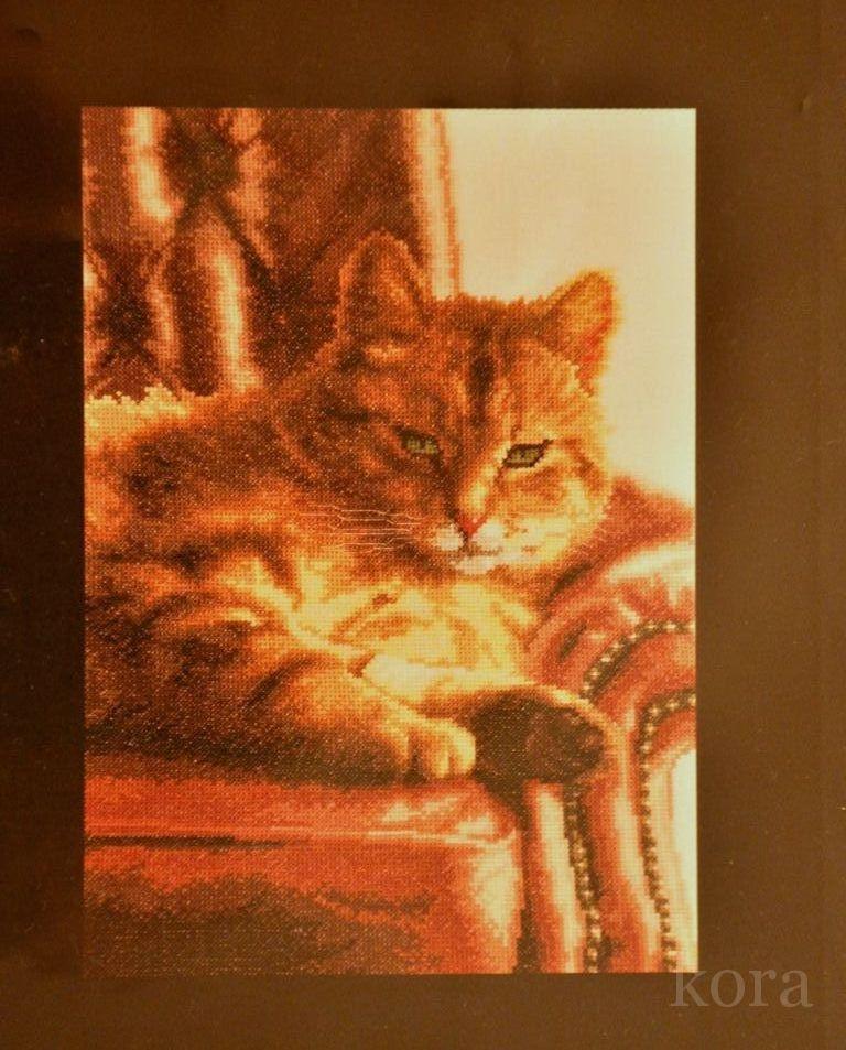 Вышивка кот на софе
