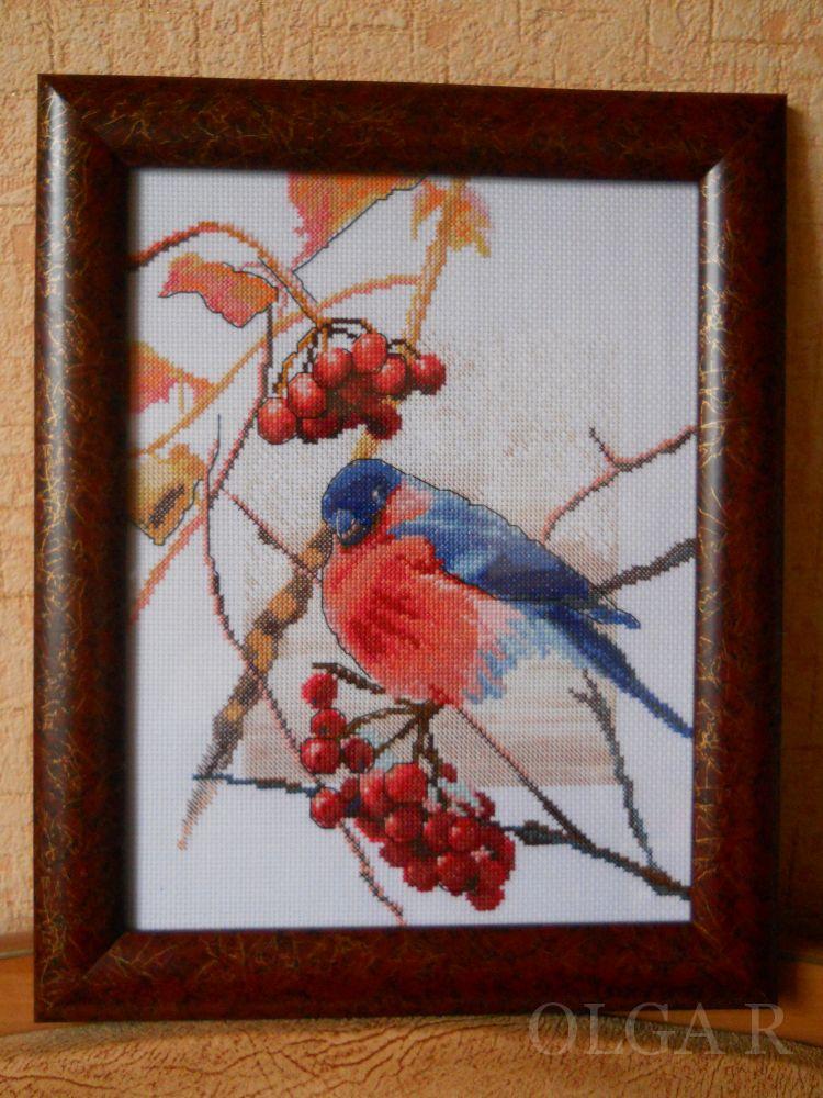 Панна открытка снегири, марта