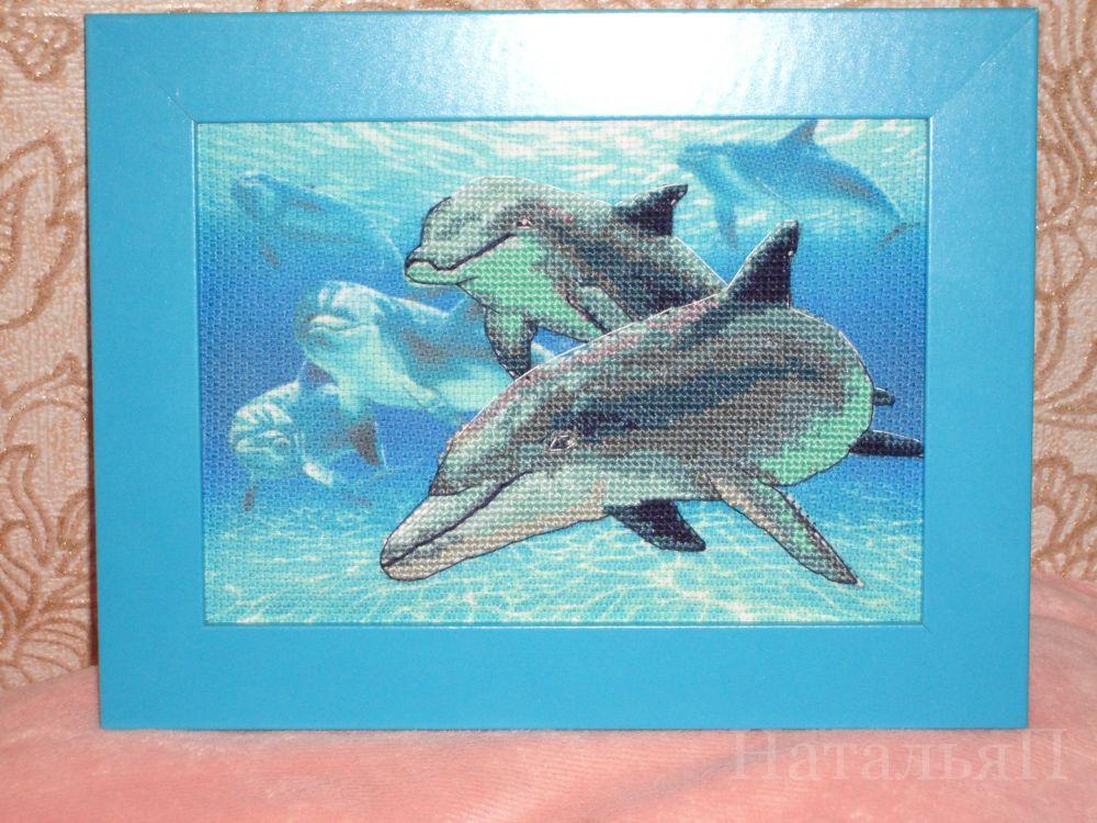 соискатели без дельфины от дименшенс картинки делает