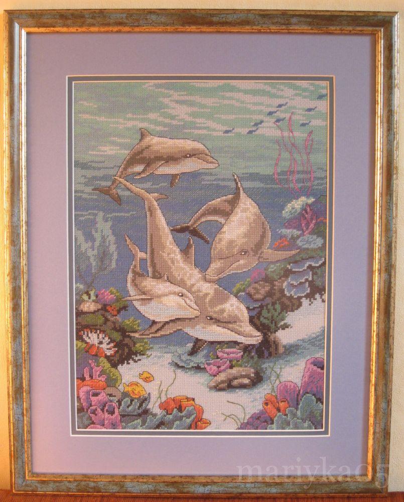 дельфины от дименшенс картинки есть фактически