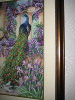 Павлин (The Peacock), Anchor, артикул 01027, размер 30х40, аида 18....